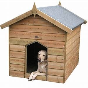 Dog kennel gt dog runs kennels tate fencing for Puppy dog kennels