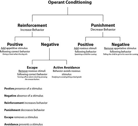 Reinforcement Of Behaviour Modification Theory by Operant Conditioning
