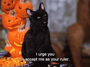 20 Times Salem From Sabrina The Teenage Witch Was Amazing ...