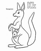 Kangaroo Coloring Pages Kangaroos Baby Drawing Cute Carrying Simple Printable Clip Tree Preschool Clipart Getdrawings Animals sketch template