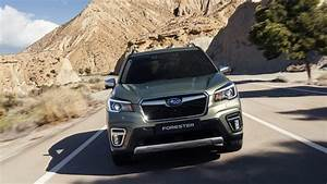 2022 Subaru Forester Sti Cargo Space  Gas Changes  Release