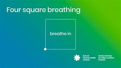 Breathing Deep Square Belly Four Coping Stress