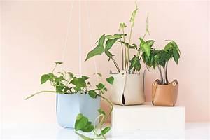 Suspension Plante Interieur : diy suspension en cuir pour plante ~ Preciouscoupons.com Idées de Décoration