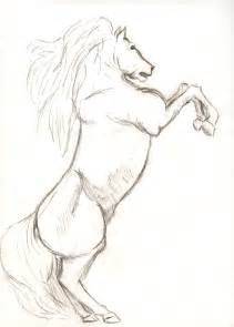 Horse Drawings Sketches
