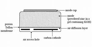 Wiring Diagram Database  The Cell Diagram For The Reaction