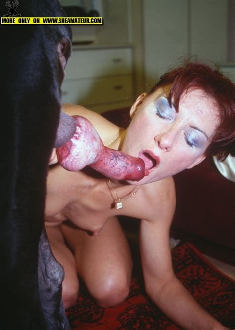just by seeing a dog dick her pussy starts to drip animal sex fun