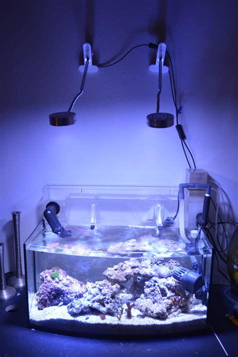 gallon rimless tank nano budget build reef