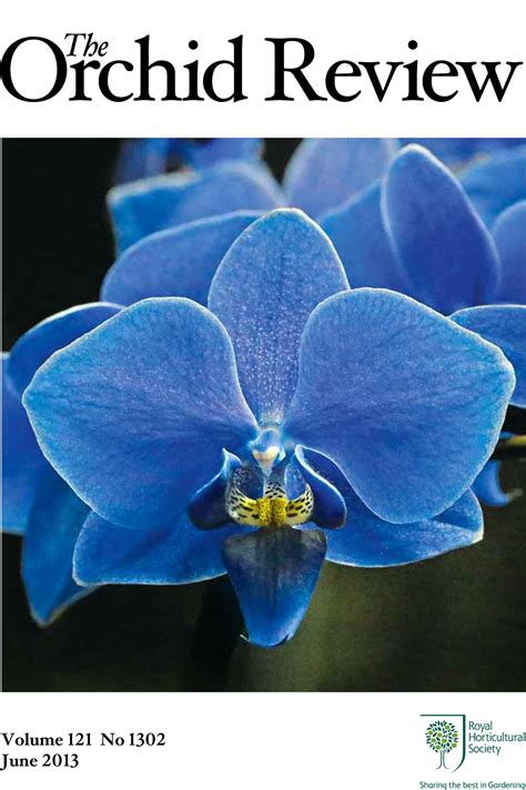 Read Highlights From The Orchid Review June 2013 Rhs