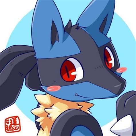 1000 images about lucario on mega