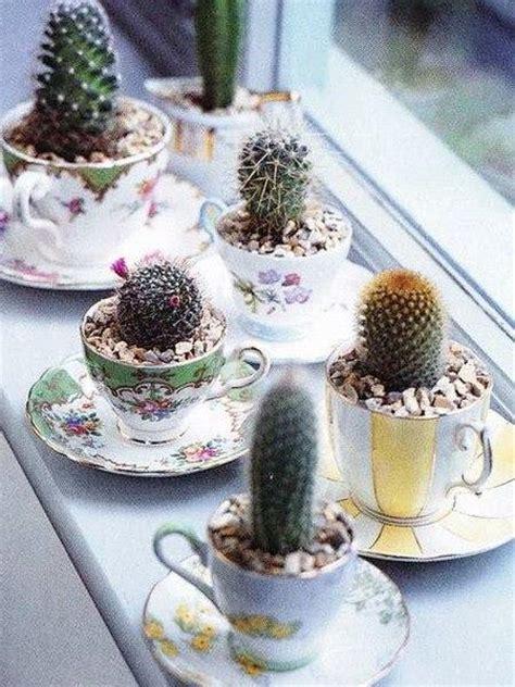 home decorating  cacti  handmade cactus home