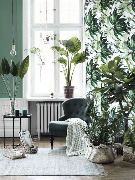 Images Of Living Room Plants by Revitalize Your Home With Lush Indoor Plants In Every Room