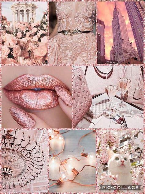 rose gold aesthetic world amino