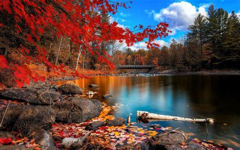 Background Nature Desktop Wallpaper Hd by Nature Wallpapers Hd Desktop And Mobile Backgrounds