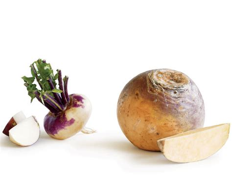 rutabaga vs turnip turnip or rutabaga finecooking