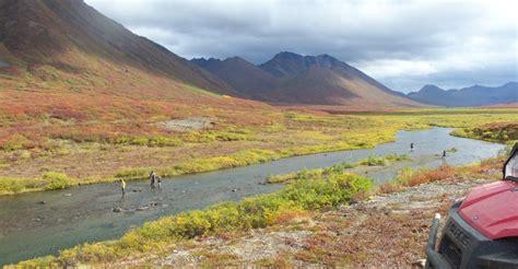 fishing alaska denali highway alpine creek lodge