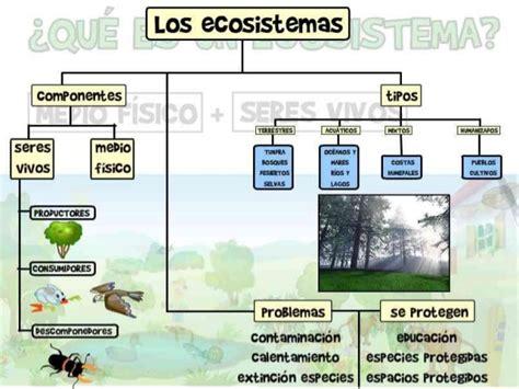 tipos de ecosistemas