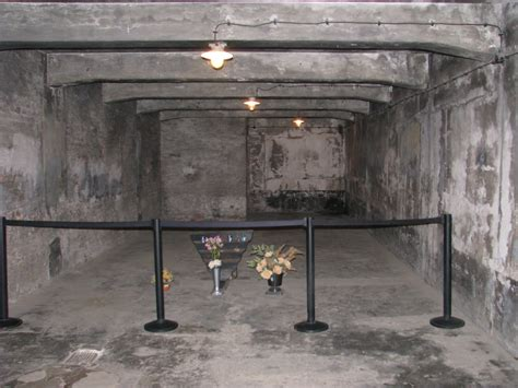 chambre a gaz auschwitz the gas chambers jan27 org committee