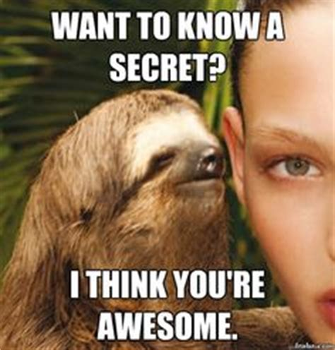 You Re Awesome Meme - 1000 images about kudos on pinterest ryan gosling meme you re awesome and bill murray