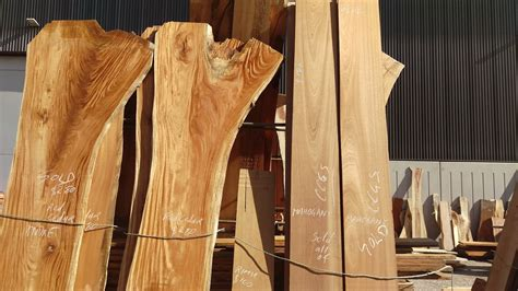 timber working  wood show sydney  machinesu