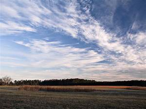 File:Cirrus clouds cold day.jpg - Wikimedia Commons