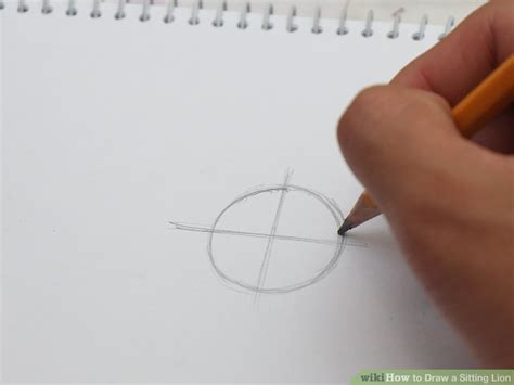 draw  sitting lion  steps  pictures wikihow