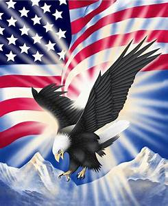 Patriotic Bald Eagle Wallpaper - WallpaperSafari