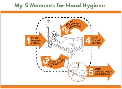 Evidence-Based Approaches to Hand Hygiene: Best Practices ...