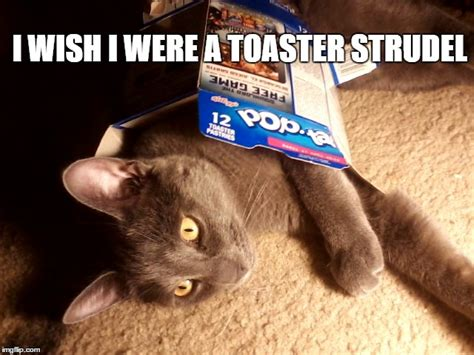 Toaster Strudel Meme - image tagged in toaster strudel imgflip