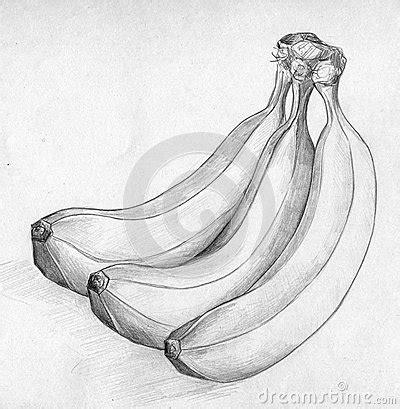 banana sketch stock illustration image