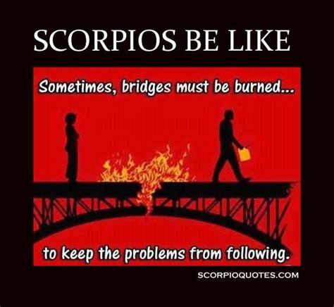 Scorpio Memes - 25 best ideas about burning bridges on pinterest