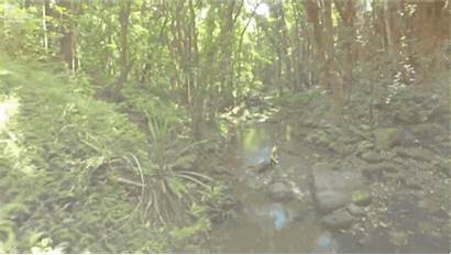 Kauai Want Huffpost Doesn Nothing