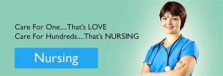 Best Nursing Assignment Writers