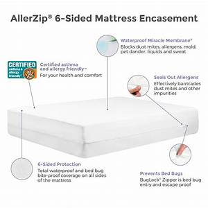 protect a bed allerzip allergy dust mite bed bug proof With bed bug encasement reviews
