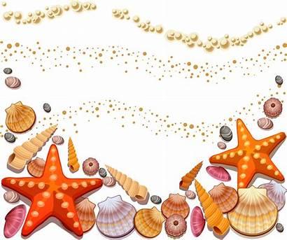 Clipart Seashells Shell Starfish Transparent Seashell Silhouette