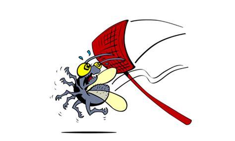 vliegenmepper hema een elektrische vliegenmepper is dat handig grabbits