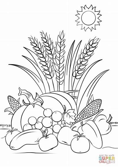 Harvest Coloring Fall Pages Printable Autumn Leaves