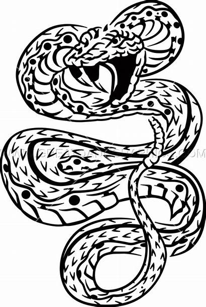 Tattoo Snake Transparent Pluspng Categories Featured Related