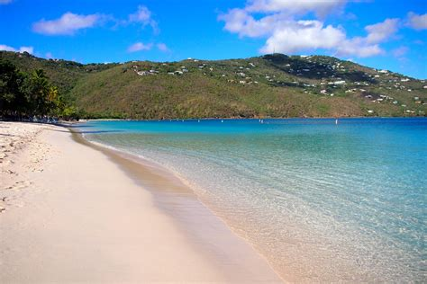 My Morning Swim With The Sea Turtles Of Magens Bay St