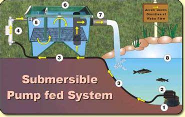 basic filter types pond filter system ponds backyard