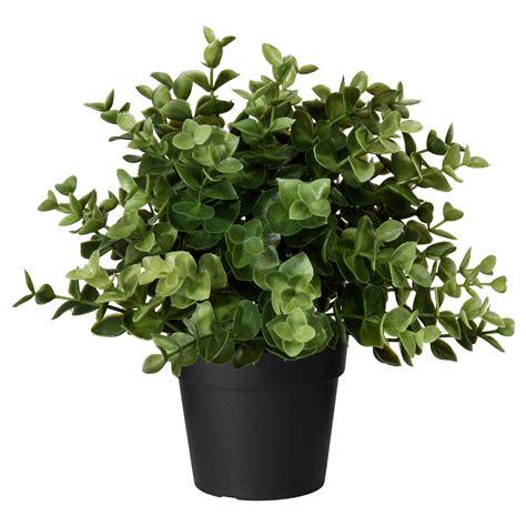 potted plants artificial flowers artificial plants ikea
