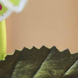 Lime A Metal : lime metal magnetic artificial daisy pick pins magnets ~ Edinachiropracticcenter.com Idées de Décoration