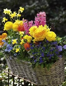 Blumenbeete Zum Nachpflanzen : sukkulenten pflegen und als deko einsetzen wohnung ~ Yasmunasinghe.com Haus und Dekorationen
