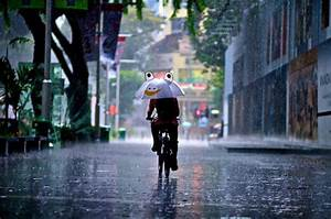 Rainy Day Photography: 35 Dazzling Examples - Hongkiat