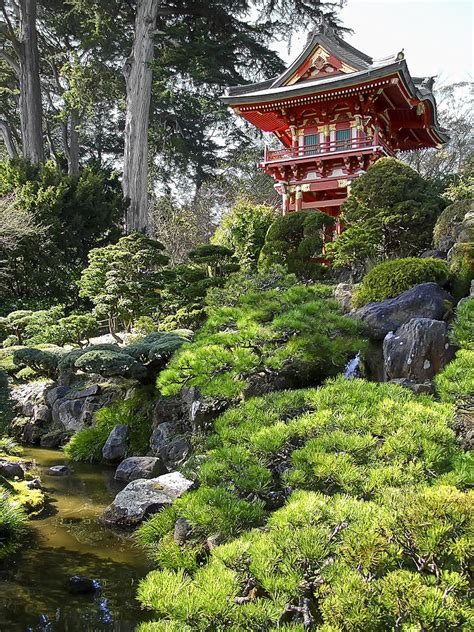 japanese tea garden pagoda san francisco by daniel hagerman