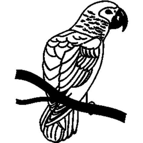 parrot clipart black and white perch clipart clipart panda free clipart images