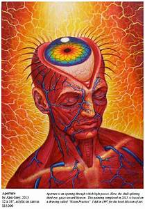 Entheon The Alex Grey Visionary Art Experience By Cosm