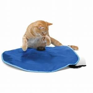 Jouets Pour Chats D Appartement : tapis de jeu attrape moi si tu peux sport pet designs ~ Melissatoandfro.com Idées de Décoration