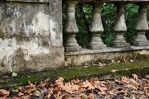 Moos Auf Gartenplatten Entfernen : moos vom balkon entfernen so gelingt 39 s ~ Michelbontemps.com Haus und Dekorationen