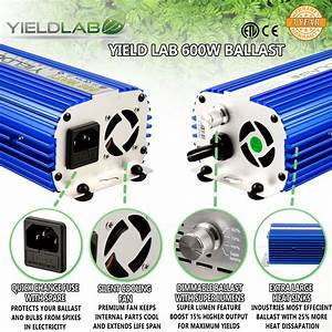 Yield Lab Pro Series 600w Hps And Mh Air Cool Hood Double