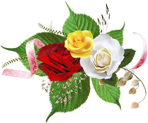 background  bunga mawar  keren